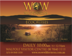 WOW Wilderness Eco Cruises