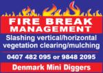 Denmark Mini Diggers